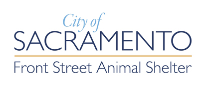 City Animal Control